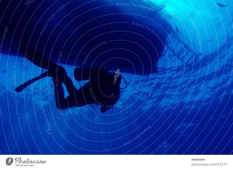 Lichtspiel in blauem Wasser 2 Meer Taucher tauchen Wasserfahrzeug Wellen Leiter diving underwater Unterwasseraufnahme