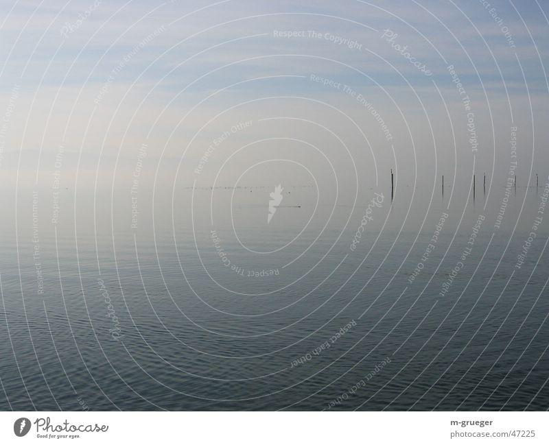 Bodensee im Dunst Wasser ruhig Einsamkeit Nebel