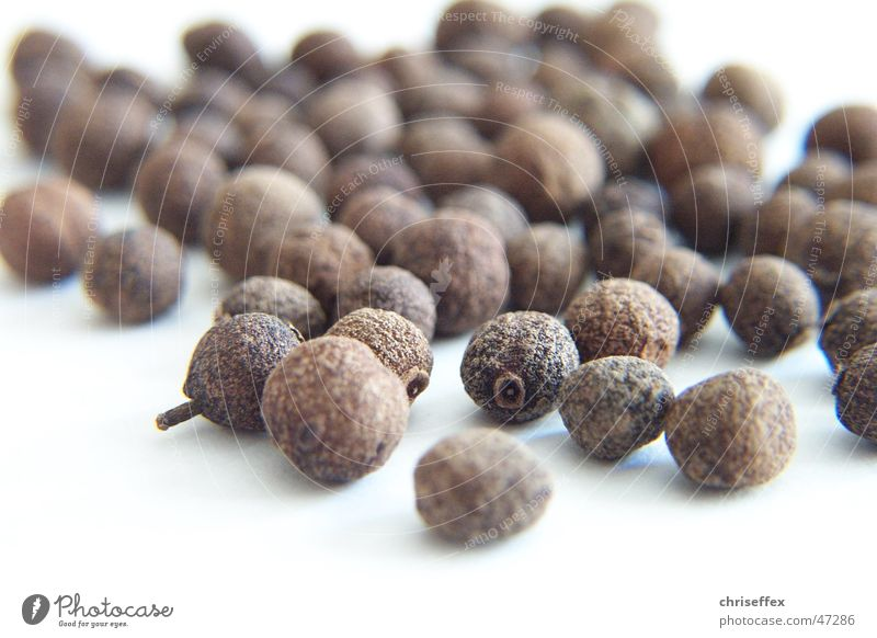 Piment Natur weiß Ernährung braun Kochen & Garen & Backen Kugel Kräuter & Gewürze Korn getrocknet Geschmackssinn Pfeffer Gewürznelke