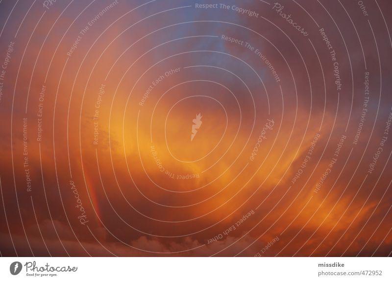 sommergold Glück harmonisch Umwelt Natur Urelemente Luft Himmel Wolken Sonne Sonnenaufgang Sonnenuntergang Sonnenlicht Klima Wetter Schönes Wetter Zeichen