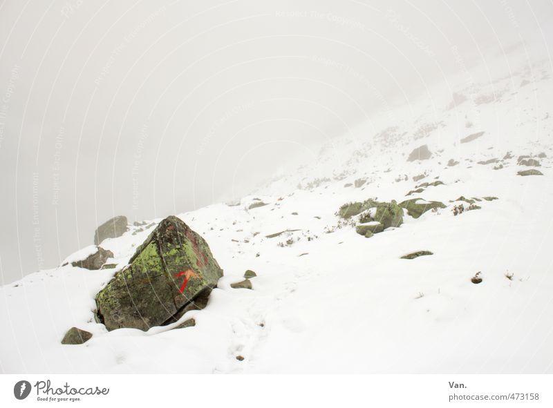 Ich kann den Weg deutlich sehen!! Berge u. Gebirge wandern Natur Landschaft Wolken schlechtes Wetter Nebel Schnee Felsen Alpen kalt weiß Stein