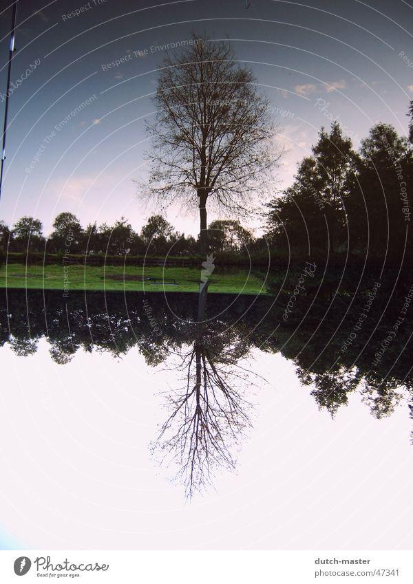 Summer in Leeuwarden Niederlande Ferien & Urlaub & Reisen Sommer Campingplatz 04 dave chillig