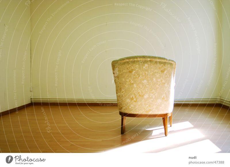 Die Katze auf dem Sessel Saal Wand Licht Einsamkeit Stuhl Raum Bodenbelag room light alone