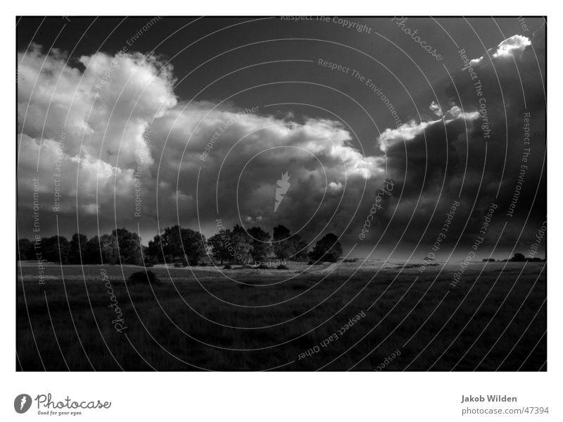 Wolken Licht & Schatten ruhig unberührt Außenaufnahme himmel und erde Himmel Ferne black&wihte Kontrast Schwarzweißfoto Natur dramatisch Freiheit