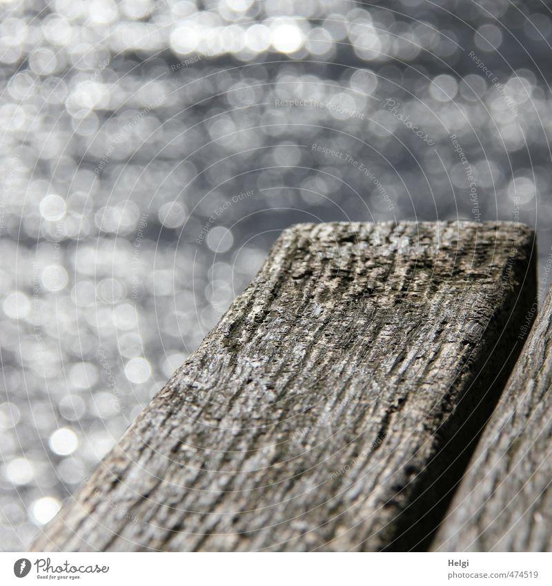 schwarzweißgrau | ooo// alt Wasser ruhig Holz natürlich außergewöhnlich glänzend leuchten einfach einzigartig Bank Flussufer bizarr