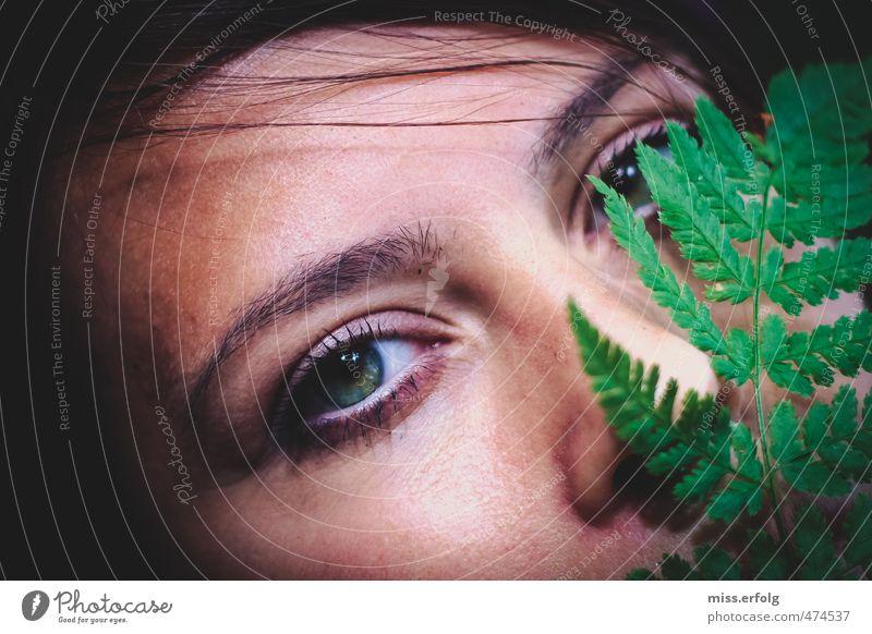 Ein Blatt vor den Mund nehmen Natur Jugendliche grün Pflanze Junge Frau schwarz 18-30 Jahre Gesicht Erwachsene Umwelt Auge feminin Haare & Frisuren Stil träumen