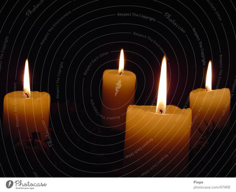 Vier brennende Kerzen auf dem Adventskranz ruhig Winter Dekoration & Verzierung Wohnzimmer Feste & Feiern leuchten träumen einzigartig Stimmung Vorfreude