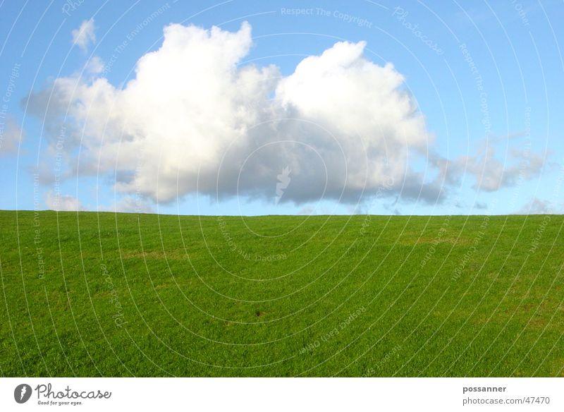 weiche landung Himmel Wolken Gras Landschaft Hügel