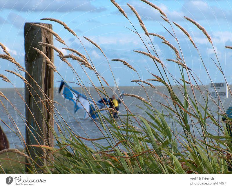 Kitelife Wind Kiting Funsport Surfen