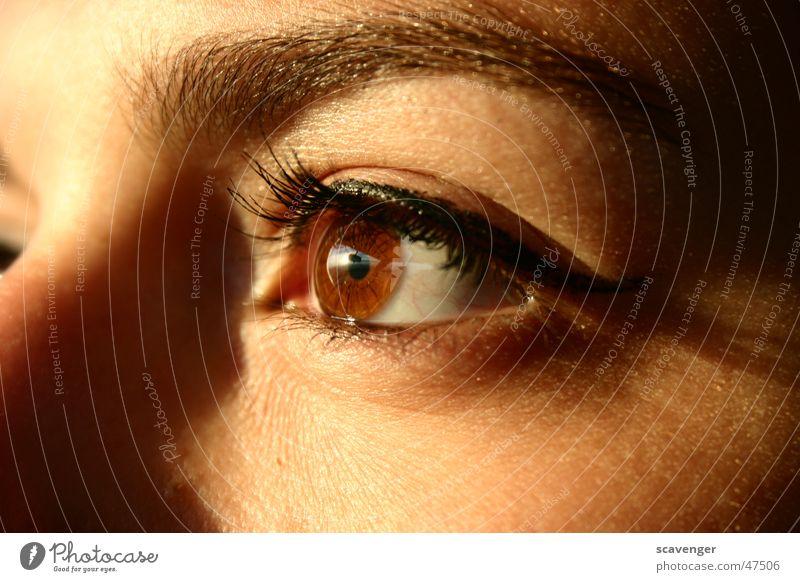Sunset Eye Sommer Farbe Gesicht Ferne Auge Herbst Berge u. Gebirge Gefühle Glück Horizont glänzend Nase weich Unendlichkeit Spiegel Lebensfreude