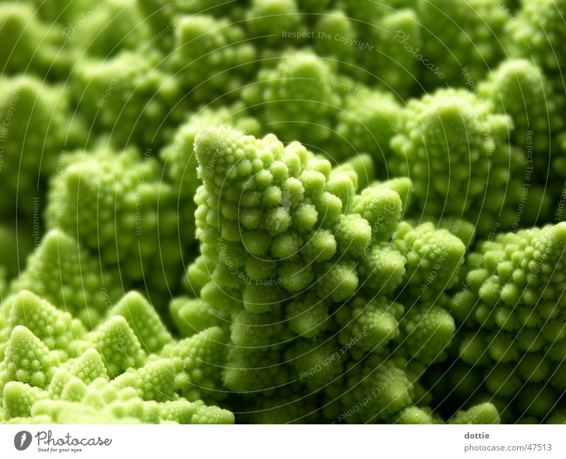 Romanesco-Krater 2 Blumenkohl Brokkoli grün Kohl romanesco Makroaufnahme Gemüse Spitze