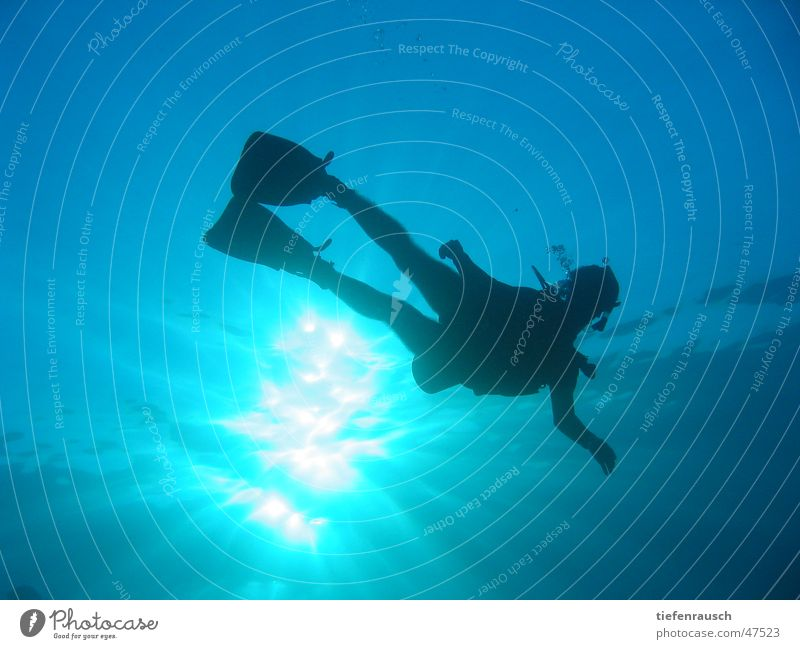 Marsa Shagra - le grand bleu Wasser Sonne tauchen Ägypten