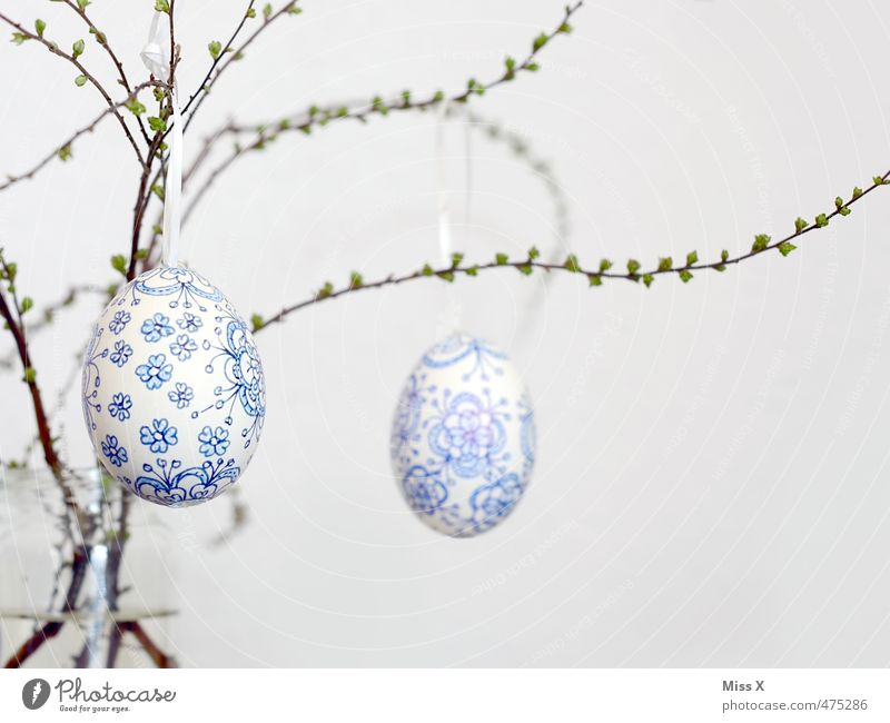 Osterei blau weiß Feste & Feiern Dekoration & Verzierung Ast Ostern zart Zweig hängen Blütenknospen zerbrechlich filigran bemalt Blattknospe Ornament