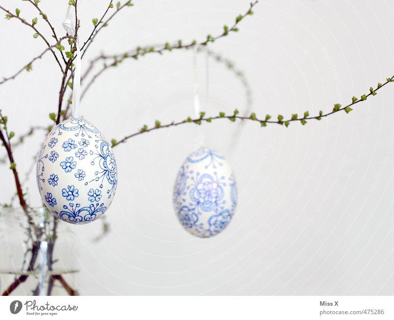 Osterei blau weiß Feste & Feiern Dekoration & Verzierung Ast Ostern zart Zweig hängen Blütenknospen zerbrechlich filigran bemalt Blattknospe Ornament Osterei
