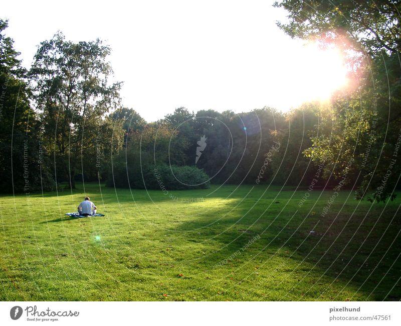last days of summer Herbst Sommer Park Licht Sonne man sitzten sitting autum light sun