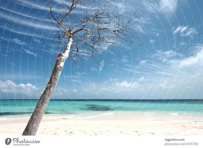 AS SIMPLE AS NICE CAN BE Himmel Natur Ferien & Urlaub & Reisen blau Baum Meer Erholung ruhig Wolken Strand Reisefotografie Sand Horizont Idylle Insel Asien