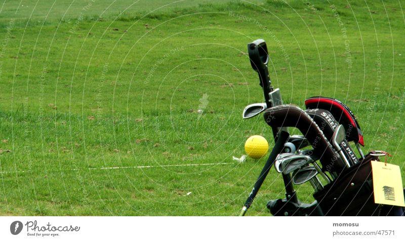 ...allein im Grün grün Wiese Ball Rasen Golf