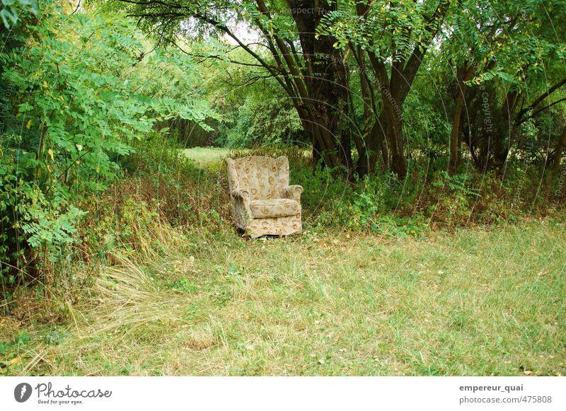 Pause. Schokoriegel Picknick Sommer Kunstwerk Natur Baum Gras Grünpflanze Wiese außergewöhnlich frech grün ruhig Hoffnung Traurigkeit Heimweh Einsamkeit