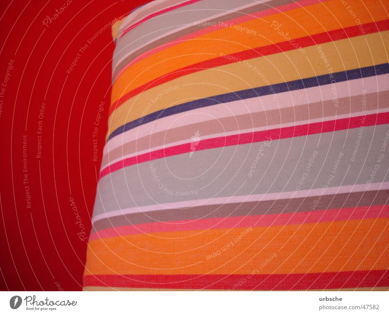 Bund ist Gesund schön weiß rot gelb Farbe Wand hell Stimmung Raum orange Bett weich violett Streifen Tapete zyan