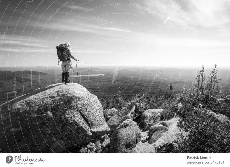On Top Of The World Mensch Himmel Natur Mann Ferien & Urlaub & Reisen Einsamkeit Landschaft Ferne Wald Erwachsene Umwelt Berge u. Gebirge Leben Sport Freiheit