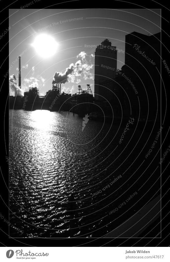 Gegenlicht hart Reflexion & Spiegelung Kontrast Außenaufnahme Schwarzweißfoto gegelicht Wasser Sonne schwarzweis klarer kalter wintermorgen