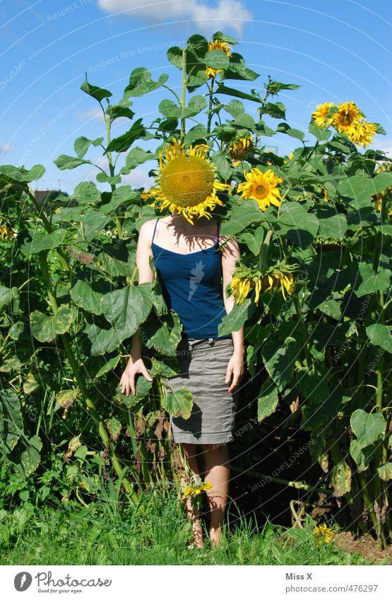 Im Feld Erneuerbare Energie Mensch Junge Frau Jugendliche Kopf 1 18-30 Jahre Erwachsene Sommer Herbst Blume Blüte Blühend Duft lustig Gefühle Stimmung Freude