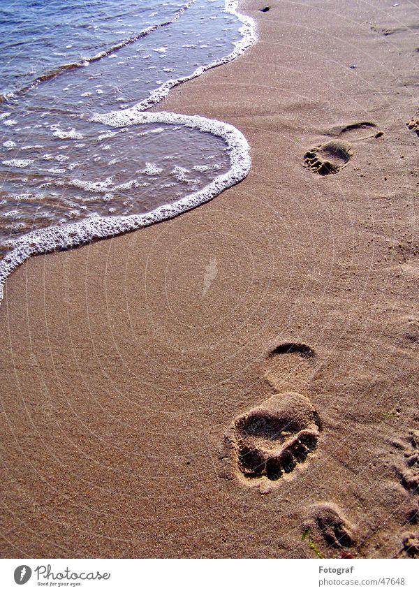 Footsteps schreiten Strand Spuren Fußspur gehen Sommer braun Wasser laufen Stempel Sand Schwimmen & Baden Sonne feet foot footsteps Barfuß