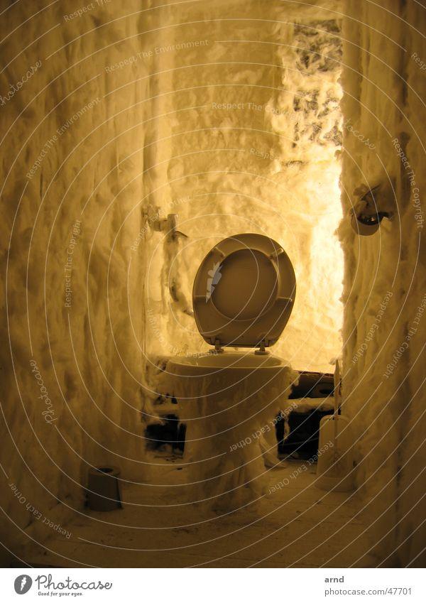 lokuslicht Licht Watte Brille Wand geheimnisvoll indirekt Ladengeschäft Pissoir Stuhlgang Toilette Schalen & Schüsseln papier toilettenpapier Geschirr Bauernhof
