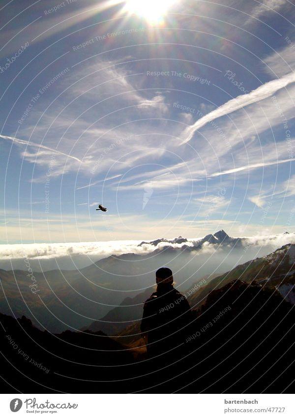 fernweh Wolken Berge u. Gebirge Vogel Gipfel