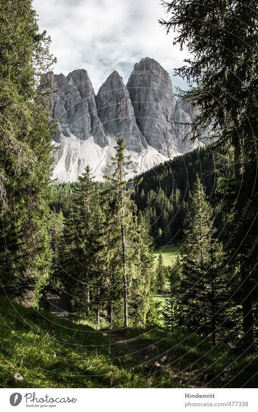 Geisler [portrait] Ferien & Urlaub & Reisen blau grün Baum Landschaft Wald Umwelt Berge u. Gebirge Wiese Gras Reisefotografie Wege & Pfade grau außergewöhnlich Felsen groß