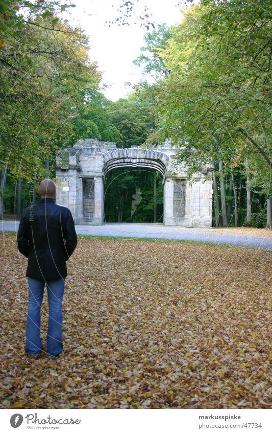 herbst ruine Mann Natur blau Baum Blatt schwarz Herbst Stil Park blond Jeanshose Jacke Theaterschauspiel Verfall Ruine trendy