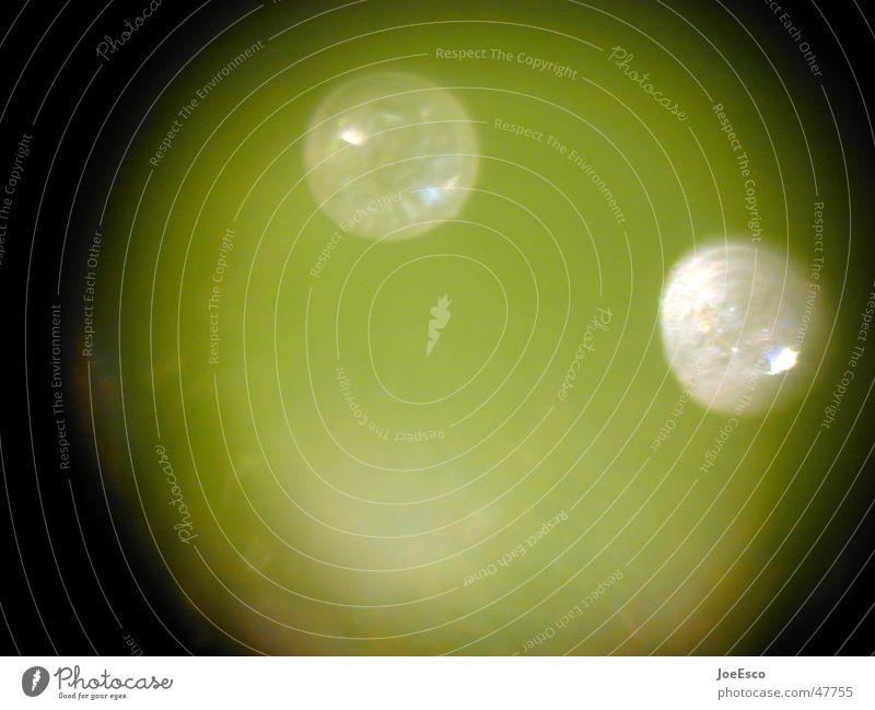hardcore makro Natur grün Pflanze Wissenschaften blasen grinsen Biologie forschen Smiley untersuchen mikroskopisch Biotechnologie Pflanzenhaar