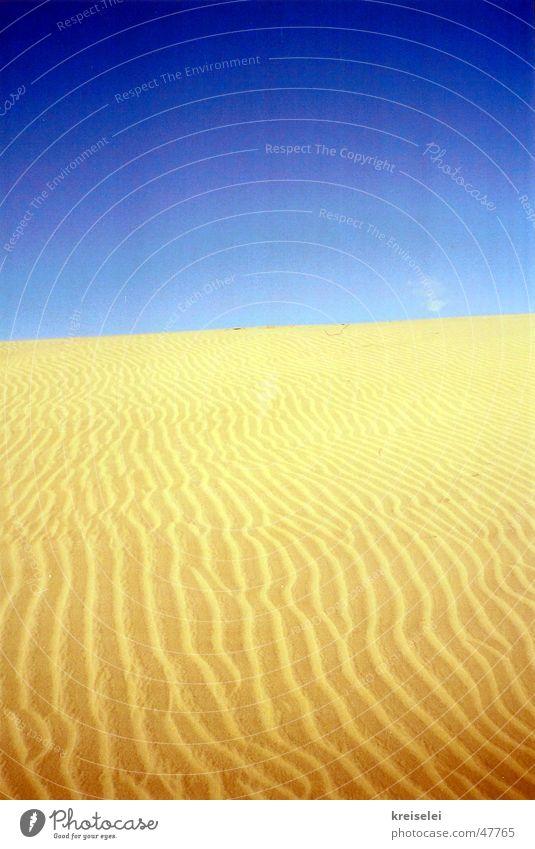wüstes Gelb Physik Wüste Sand Himmel blau Strukturen & Formen Wärme
