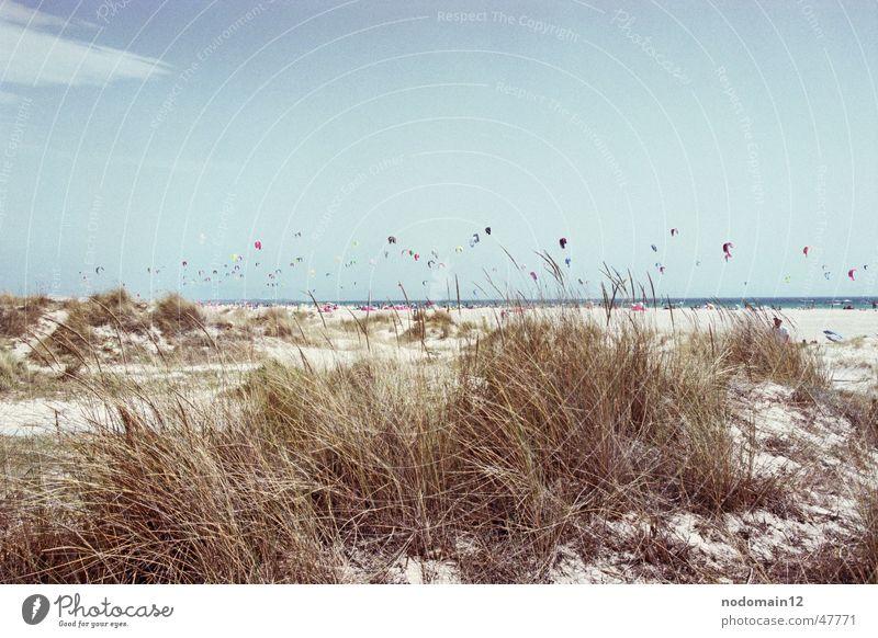 Kite-Surfing Strand Sport Sand springen Wind fliegen Regenschirm Surfen Segel extrem Kiting Gleitschirm