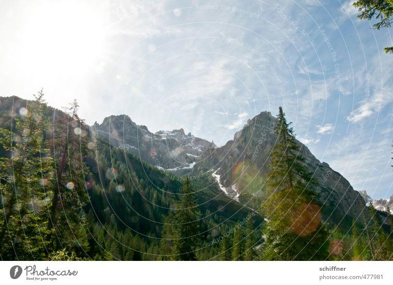 Viertel vor zwölf Umwelt Natur Landschaft Sonne Sonnenlicht Schönes Wetter Baum Felsen Alpen Berge u. Gebirge Gipfel Schneebedeckte Gipfel hell