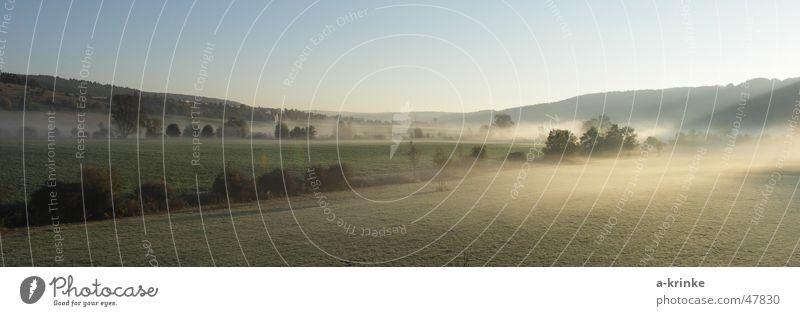 Sonnennebel Nebel Oktober kalt Sehnsucht Wiese Baum Morgen Blauer Himmel Schatten Tal Berge u. Gebirge büsche.