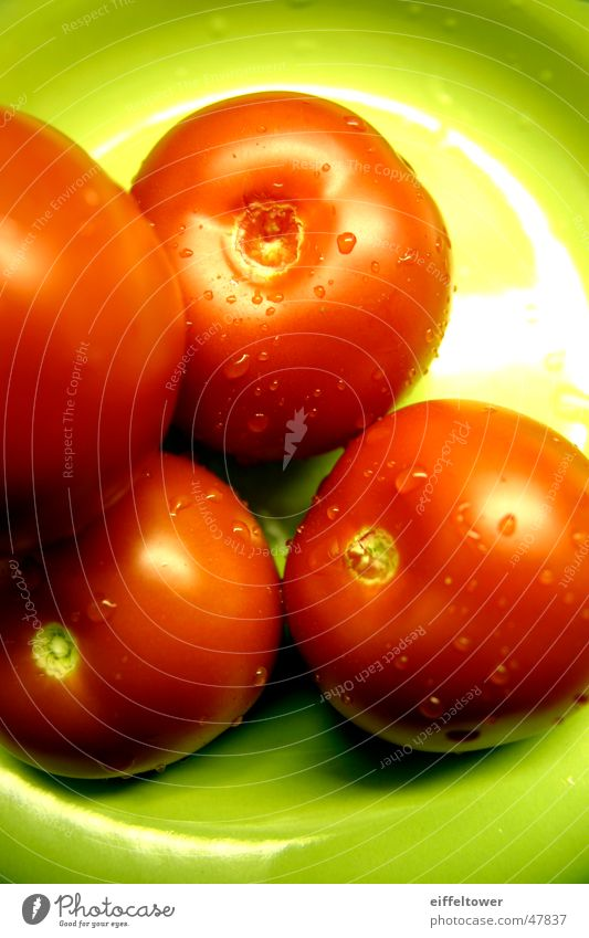 Tomate auf Teller Wasser grün rot Wassertropfen Teller Tomate