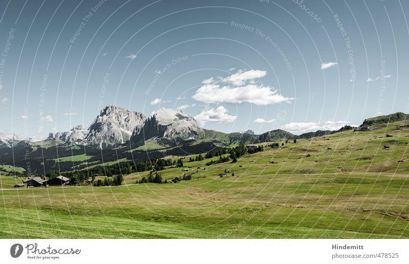 Lieber Alm dran als Alm ab. Himmel Ferien & Urlaub & Reisen blau grün Sommer Baum Wolken Wald Berge u. Gebirge Wiese Gras grau Felsen Luft Zufriedenheit Erde