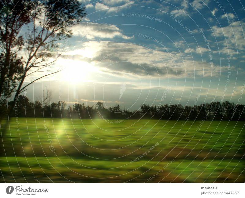 ...morgens auf der Autobahn Wiese Feld Baum Wolken Licht fahren Himmel Sonne Bewegung Lichterscheinung meadow field tree sky clouds sun light motion