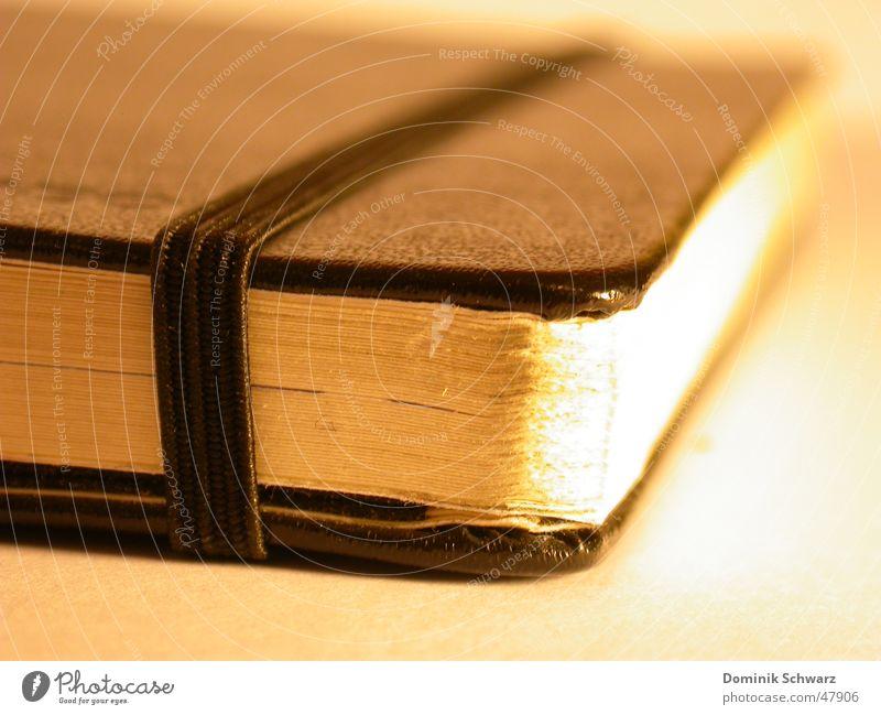 Gedankengut Notizbuch Papier Bucheinband Leder Kunstleder Zettel Text Gemälde privat Makroaufnahme Überbelichtung ideen aufschriebe Kreativität Detailaufnahme