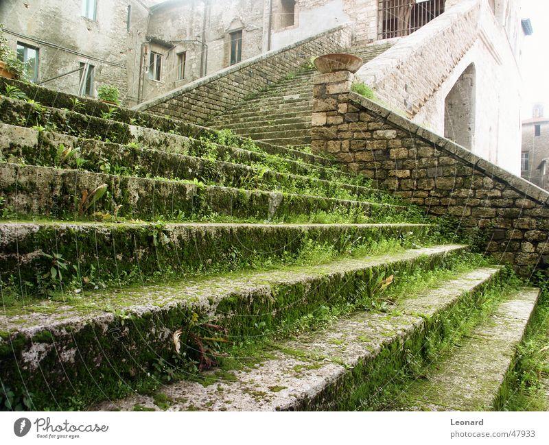 Alte Treppe Rheinland-Pfalz Palast Gras Sonne glühen Italien Leiter schreiten Stein Burg oder Schloss shine Schatten stair step grass palace castle