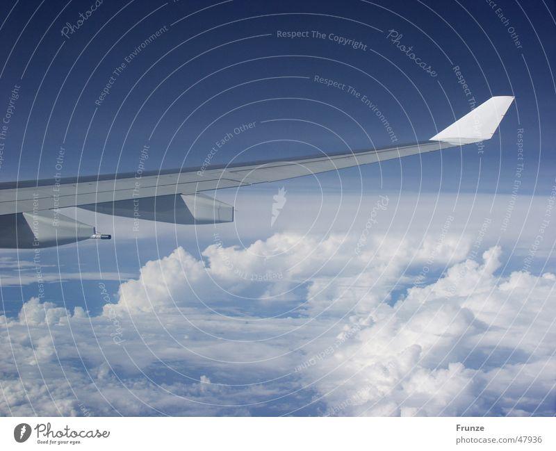 Über den Wolken... Flugzeug Tragfläche Ferien & Urlaub & Reisen Himmel blau fliegen Luftverkehr