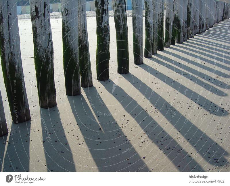 schatten schlange Küste Strand See Meer Schatten shadow sea coast north sea Nordsee Sand Sonne sun
