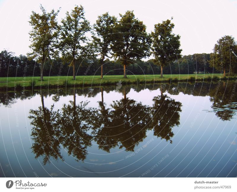 Part 2 NL 04 Baum Reflexion & Spiegelung Fotografie Sommer Niederlande See Bach Wasser spiegebild Fluss spiegelverkehrt Himmel Natur