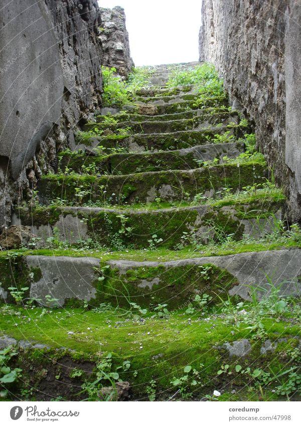 Green Mile Gebäude Ruine Gras Gemäuer grün Treppe alt Moos