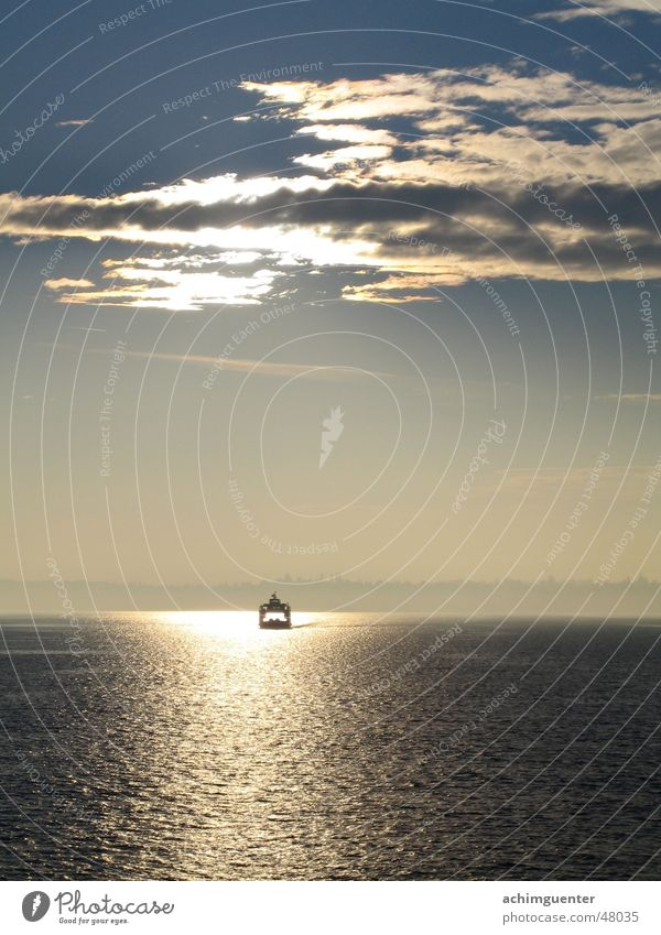 Bring mich zum Licht! Fähre See Gegenlicht Wasserfahrzeug Wellen ruhig Romantik Erholung Frieden Nebel Wolken Bodensee Abend Himmel