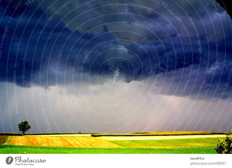 Augenblick von Gut und Böse Natur Wolken Landschaft Graffiti Stimmung Erde Wetter Sturm Gewitter Momentaufnahme Sonnenuntergang