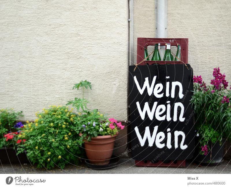 Saison eröffnet Blume Wand Mauer Feste & Feiern Party Schilder & Markierungen Ernährung Getränk Wein Restaurant Bar Werbung Alkohol Durst verkaufen Angebot