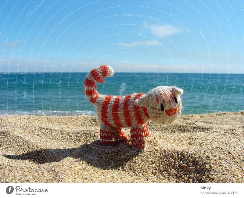 Mehr Meer Katze blau Strand Einsamkeit Tier Spielzeug Sand Seil Streifen Barcelona gestreift Hauskatze Stofftiere Europa Spanien
