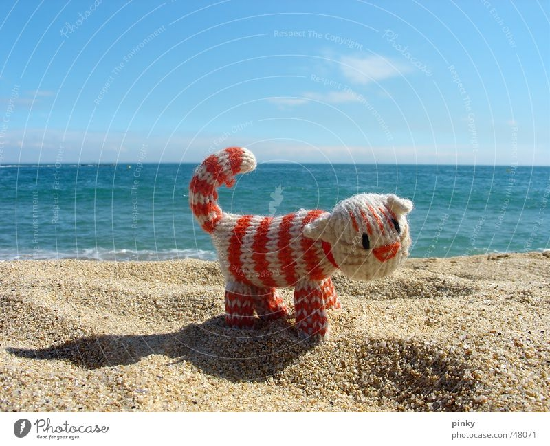 Mehr Meer Katze Seil Barcelona Strand gestreift Streifen Tier Stofftiere Hauskatze cat kitty gehäkelt crocheted ocean sea Sand blau le chat Einsamkeit weltreise